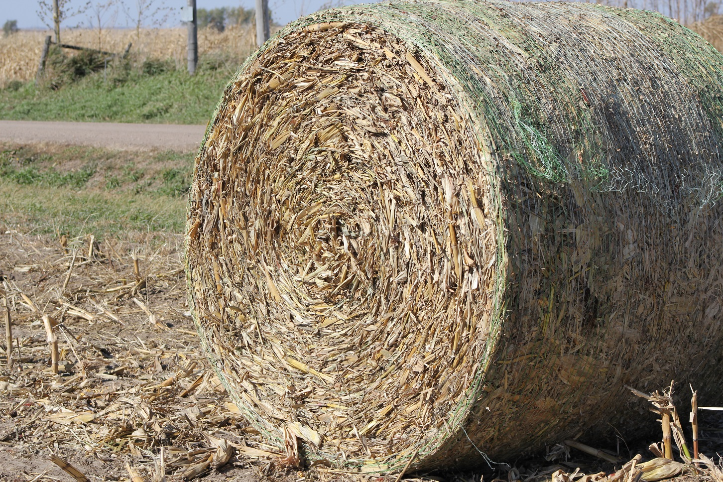 Neither plastic net wrap nor biodegradable twine get digested by rumen microbes. Photo courtesy of Troy Walz.