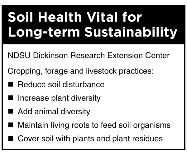 Soil Health Vital for Long-term Sustainability