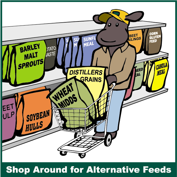 Shop Around for Alternative Feeds