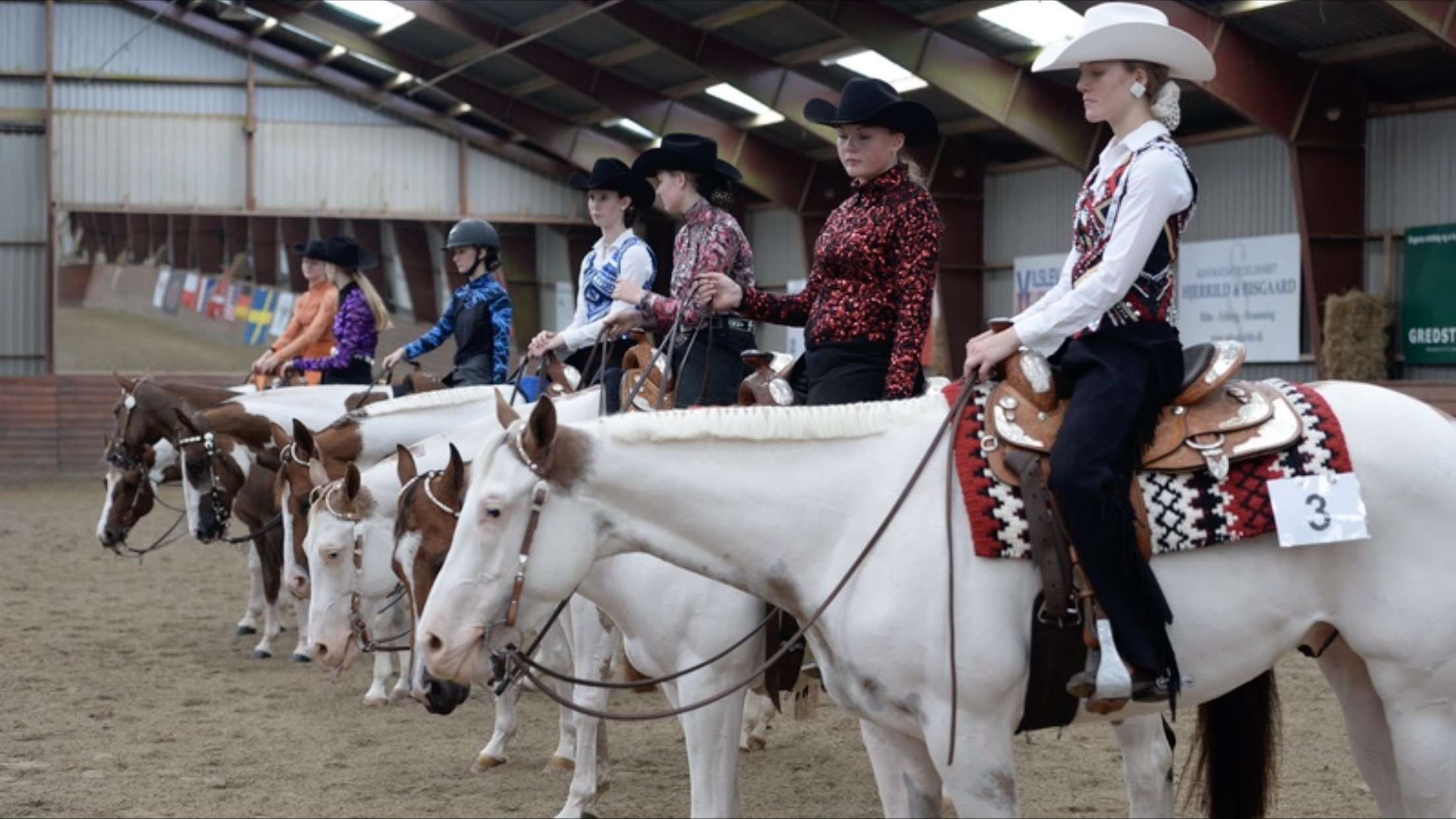 Horse owners need to practice good biosecurity if their animals will come in contact with other horses at events such as horse shows, rodeos and county fairs. (NDSU photo)