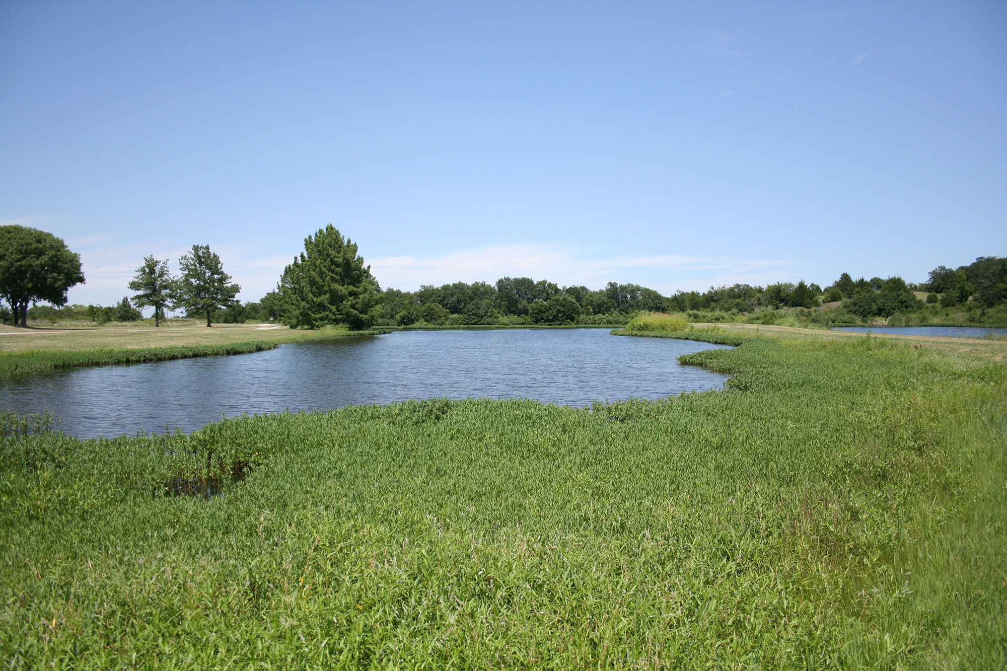 The Noble Research Institute Pond on a sunny day